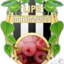 lipa_malinowice